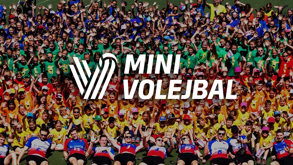 Cesky volejbal - mini nowe logo