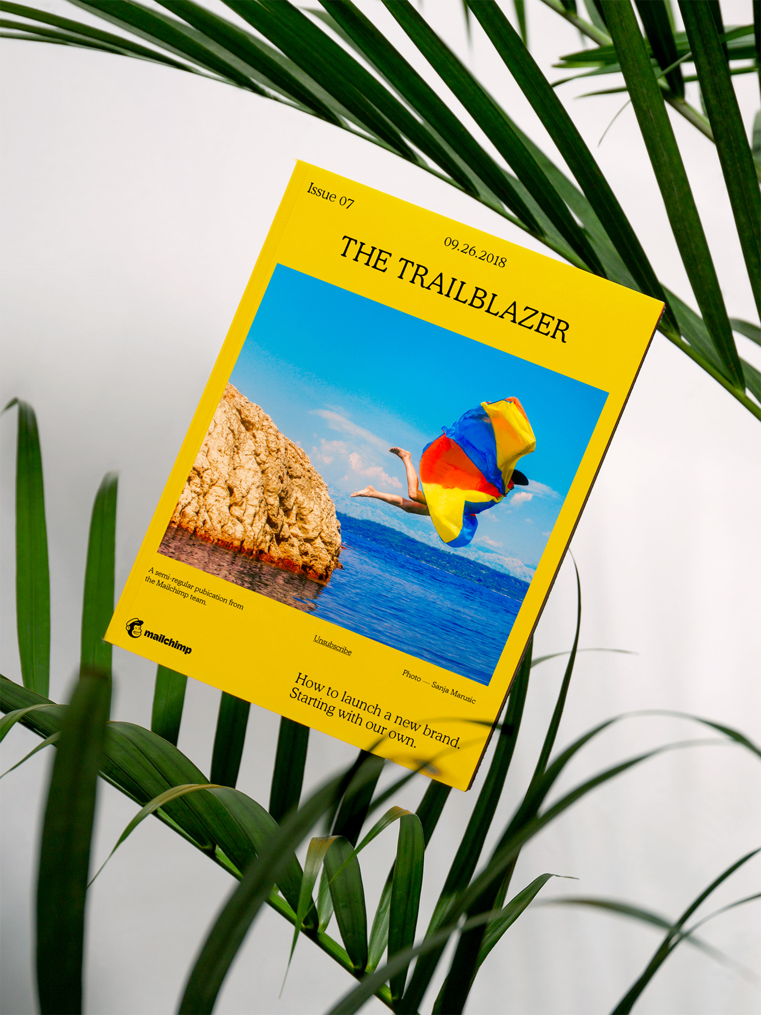 Mailchimp rebranding - magazyn