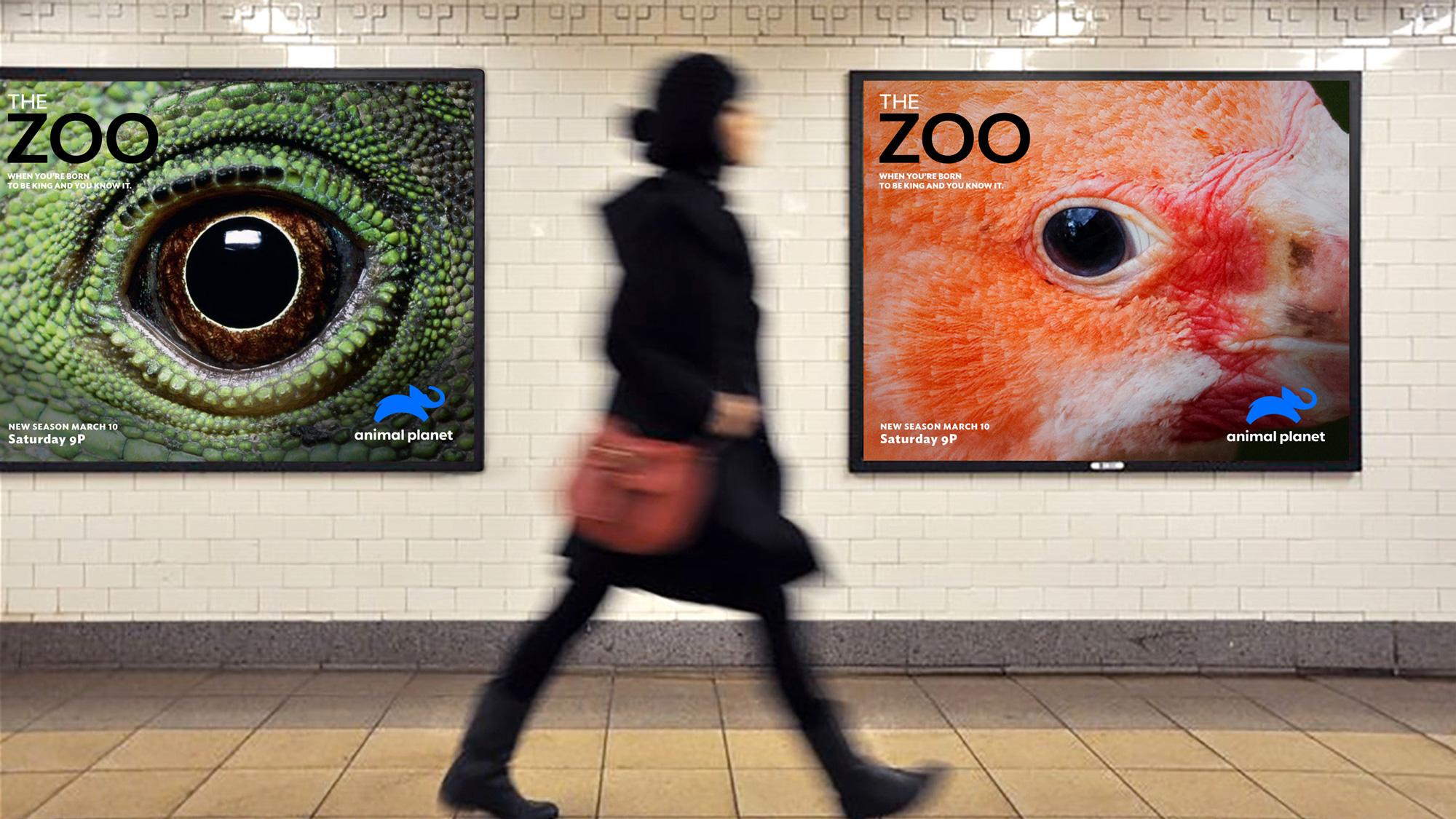 Plakaty z nowym logo kanału